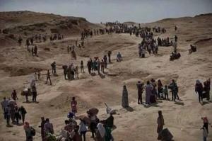 أدت العمليات العسكرية في عرسال إلى فرار آلاف من المدنيين السوريين واللبنانيين من المدينة بحثاً عن ملاذ آمن